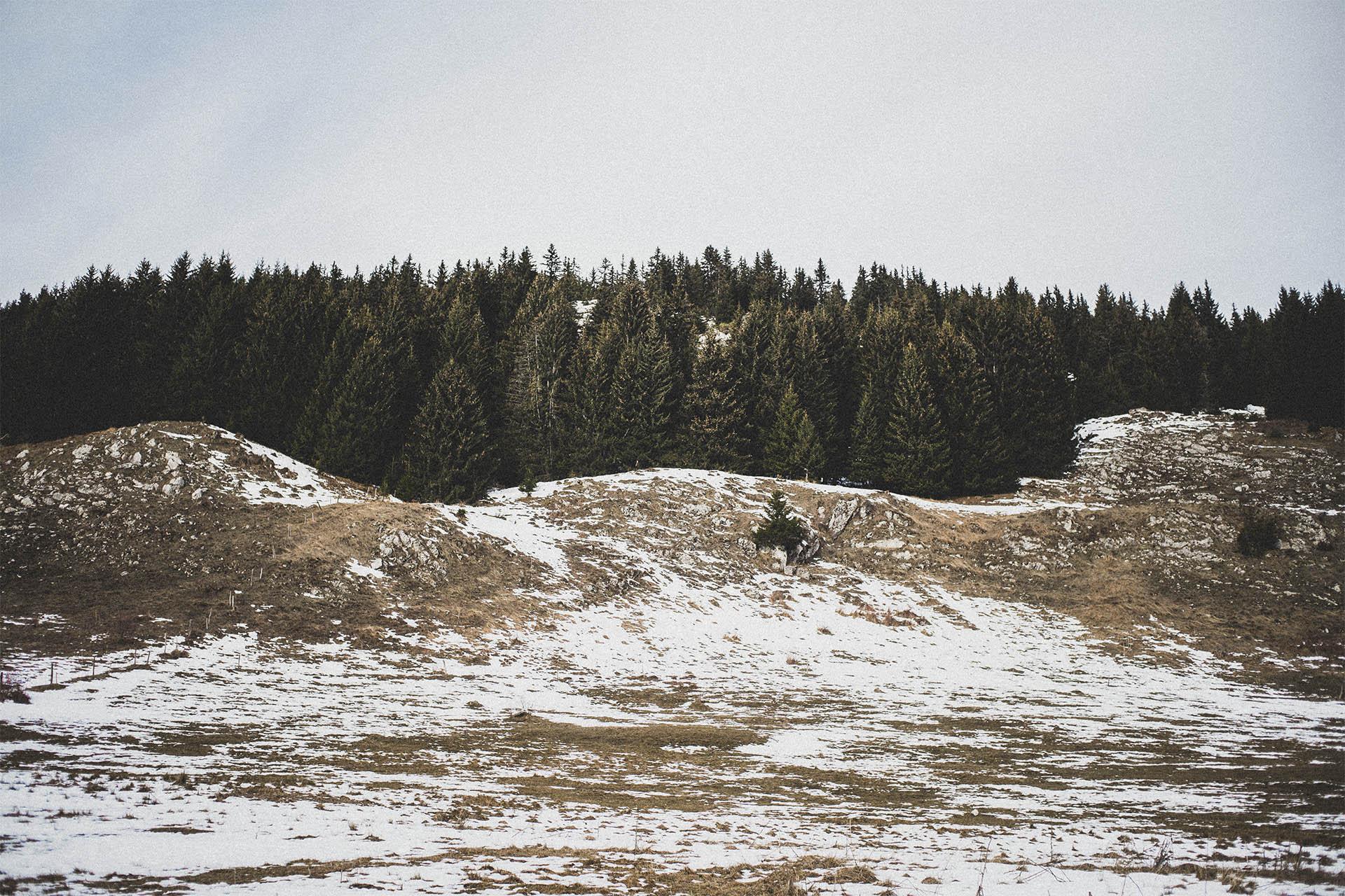Balade du dimanche au Plateau des Glières