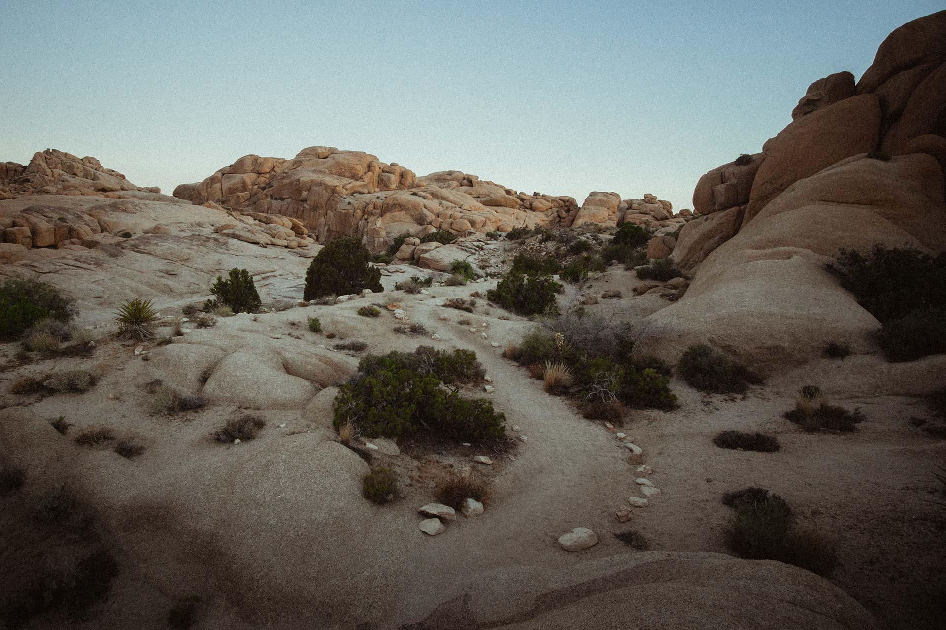 joshua-tree-jumbo-rocks