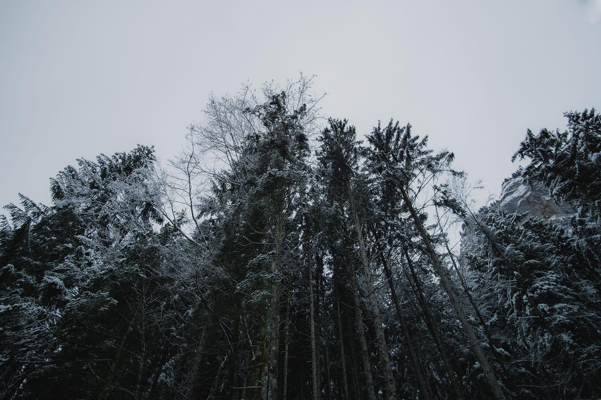 cascade-du-rouget